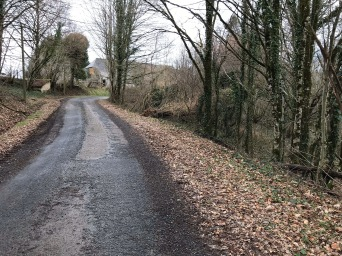 Road Leading to House