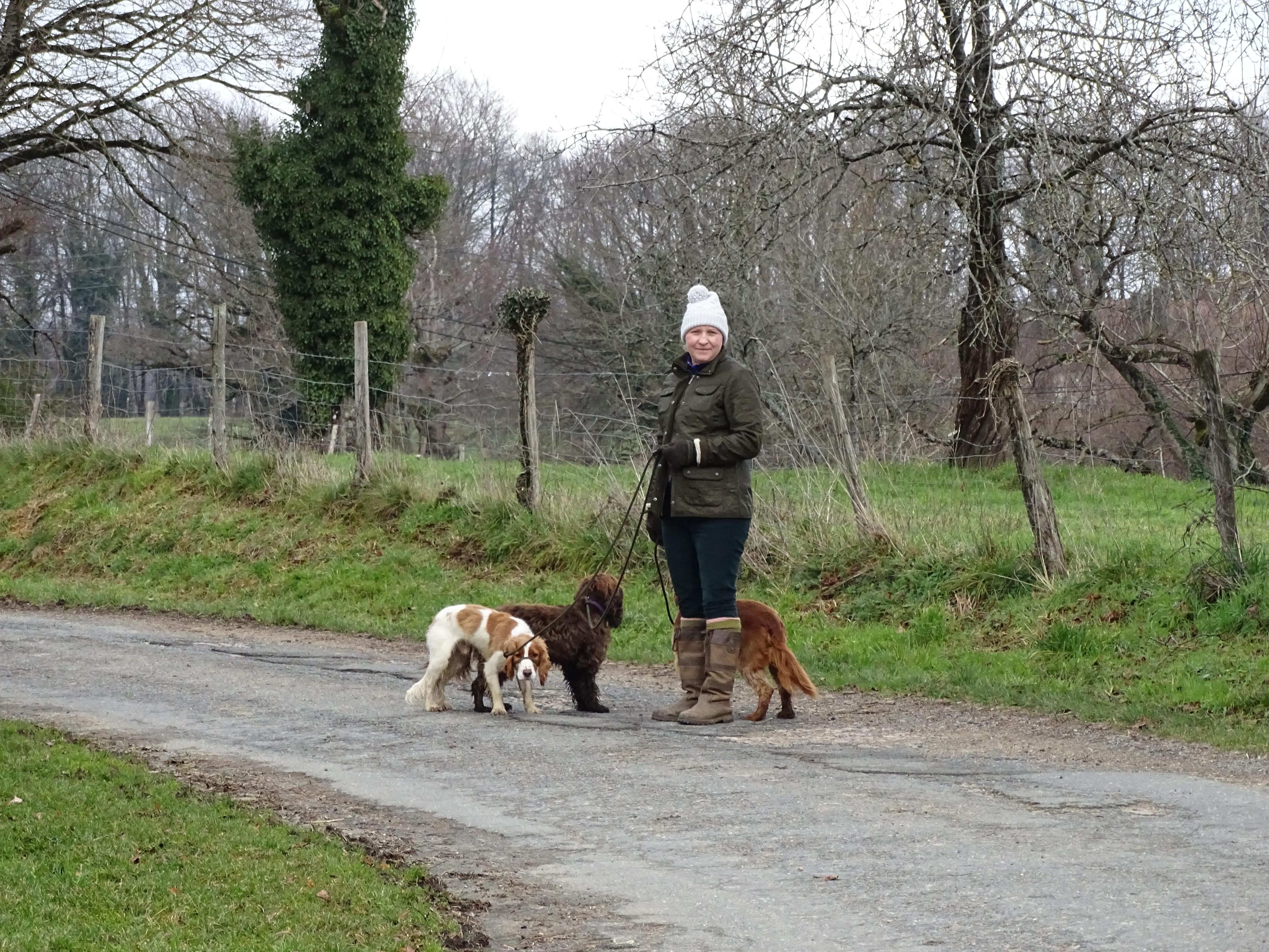 Woman walking her dogs