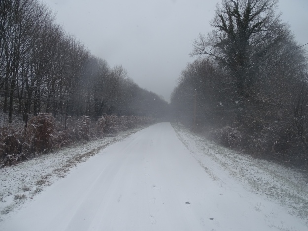 Snow on the road