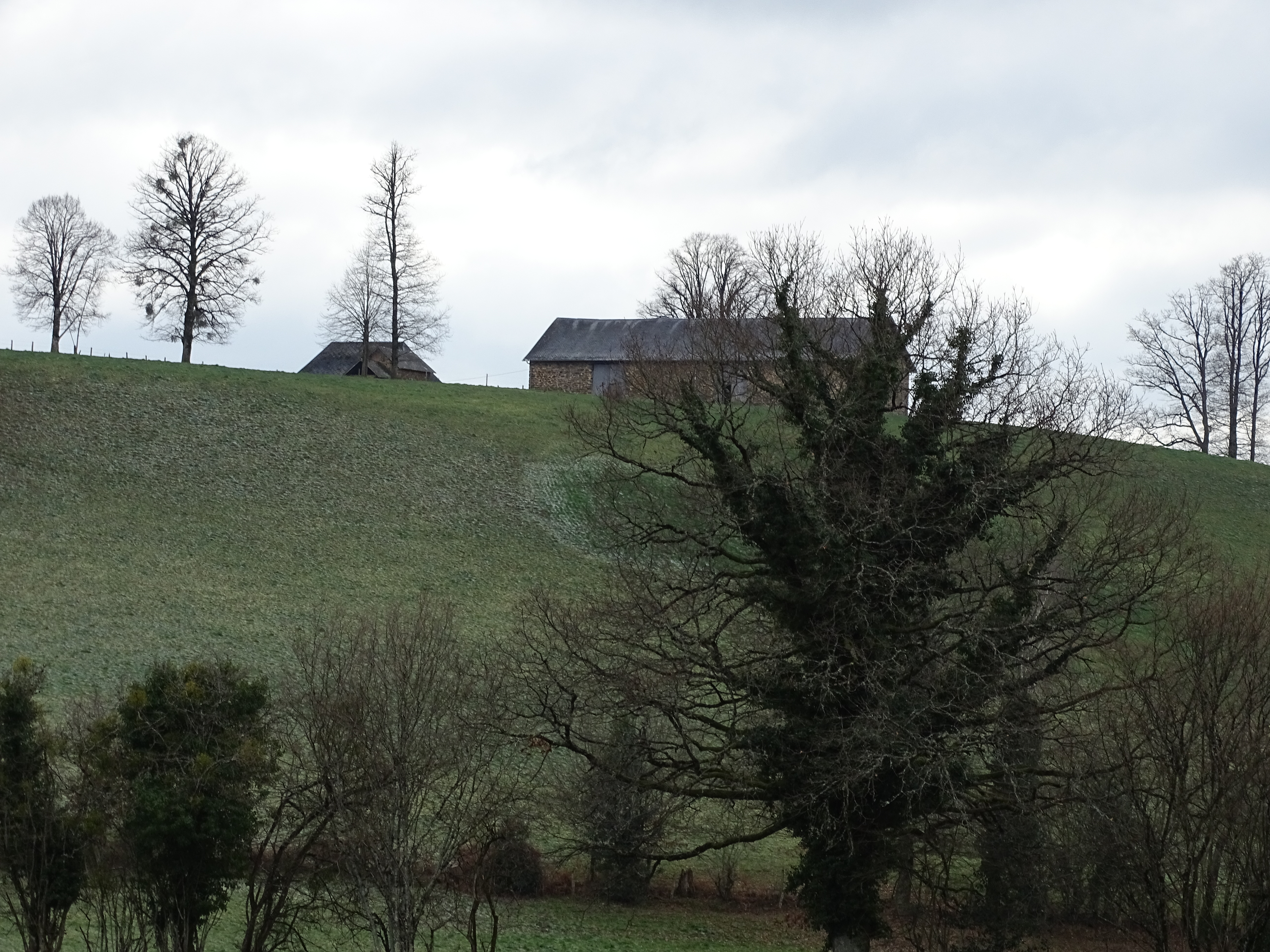Local barn on top of the hill