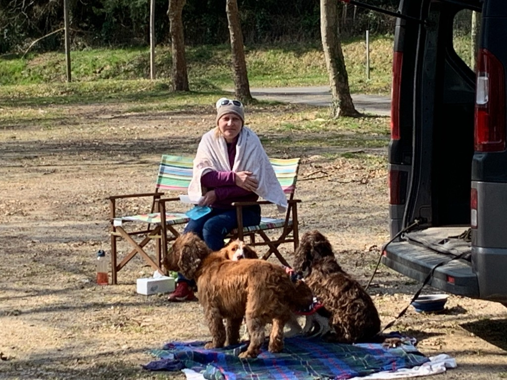 woman and her dogs at the van